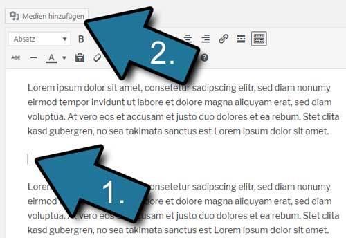 Absatz WordPress PDF einfuegen