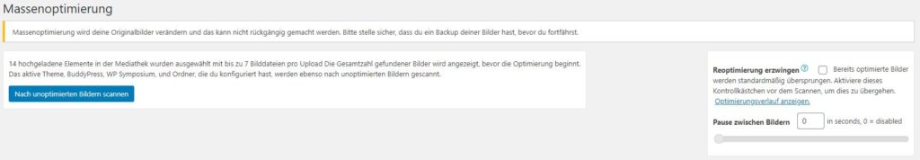 ewww-image-optimizer-plugin-massenoptimierung-2
