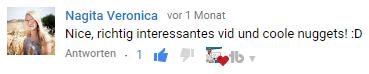 wperfolg wordpress youtube kommentar 13
