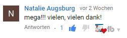 wperfolg wordpress youtube kommentar